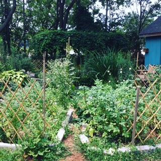 garden-2016