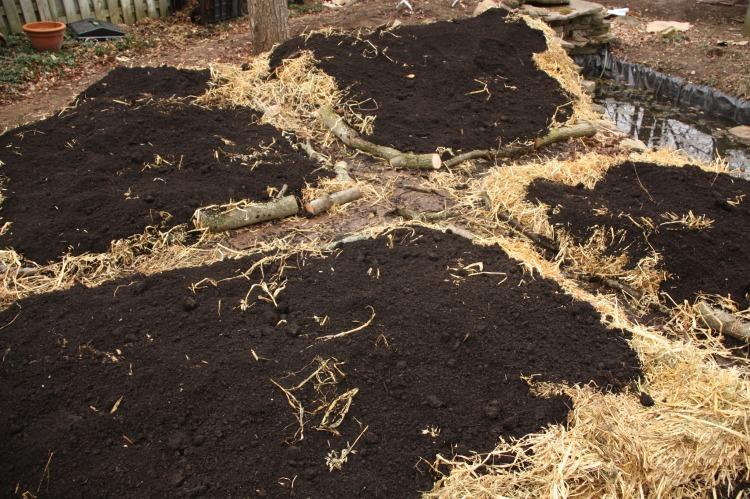 sheet mulch 4